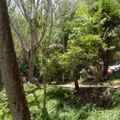 Водопад Банг Пэ и Реабилитационный центр гиббонов