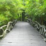 Парк Янода