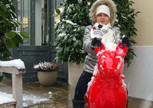 Снежки , собаки, шопинг