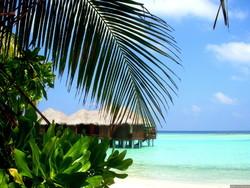 На Мальдивах продлен режим чрезвычайного положения
