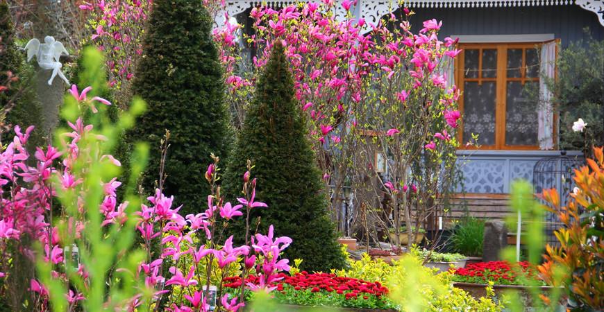 Сад «Гардения» Зураба Шеварднадзе