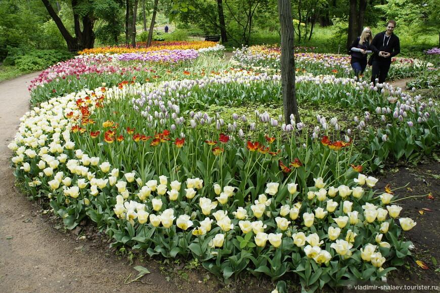 Самый доступный, самый информативный, самый уютный сад столицы!