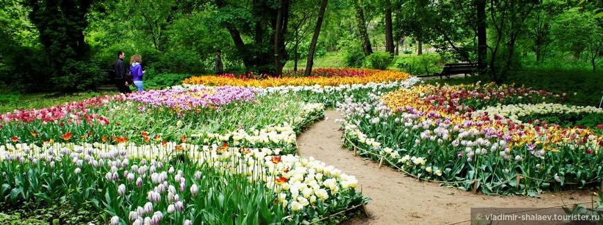 «Аптекарский огород» — памятник истории и культуры Москвы, старейший ботанический сад России.