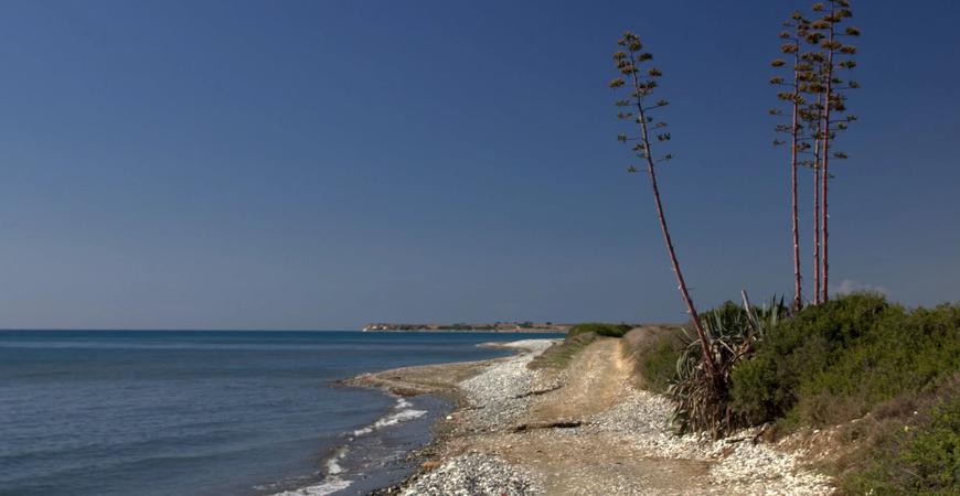 Пляж Мазотос (Mazotos Beach)
