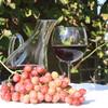 Веронские вина - гордость Италии
