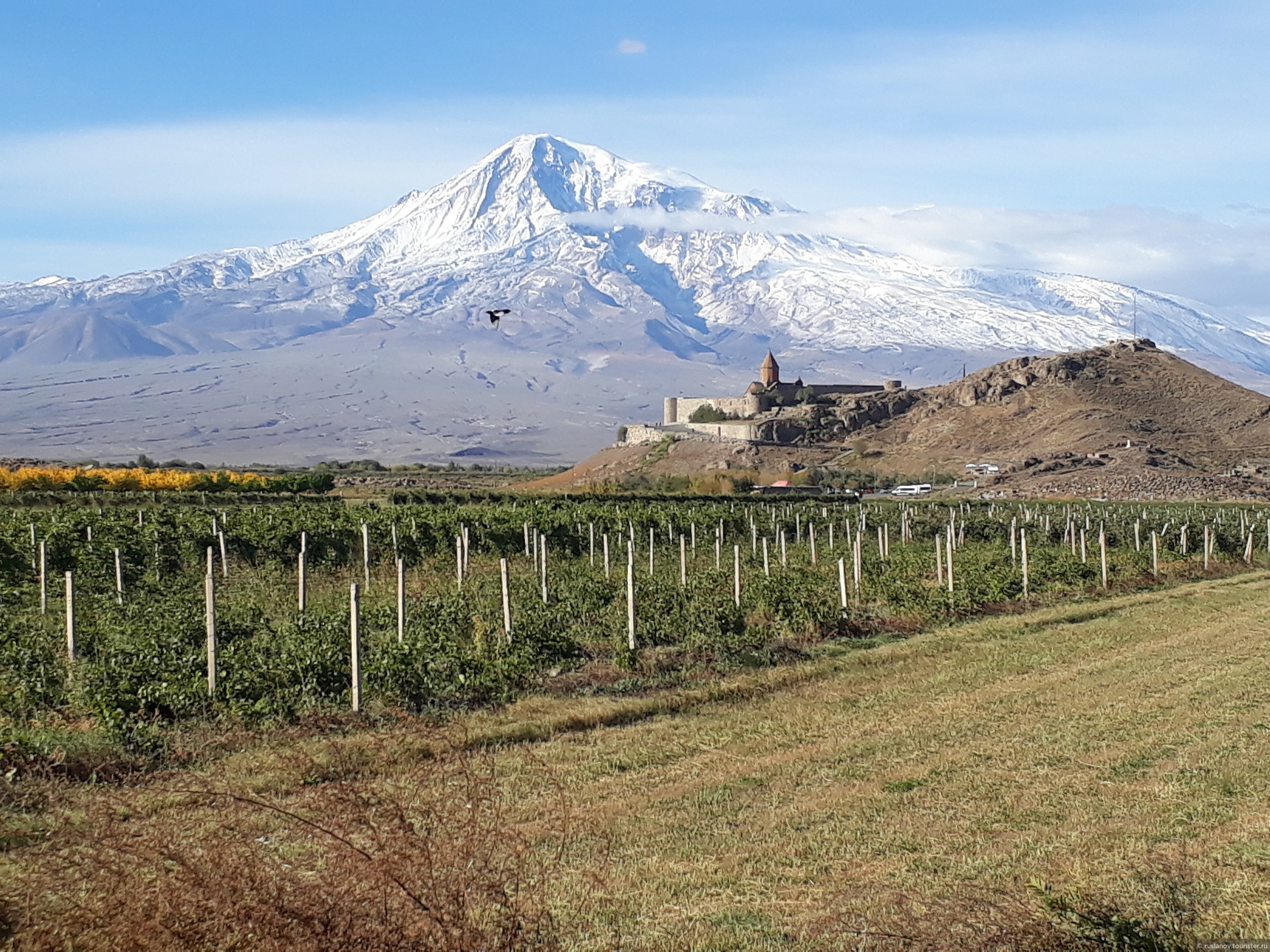 фото горы арарат со стороны армении отдаю