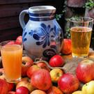 Фестиваль яблочного вина