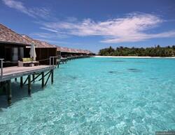 На Мальдивах отменён режим ЧП