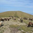 Национальный парк «Центральные Балканы»