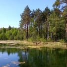 Национальный парк «Орловское полесье»