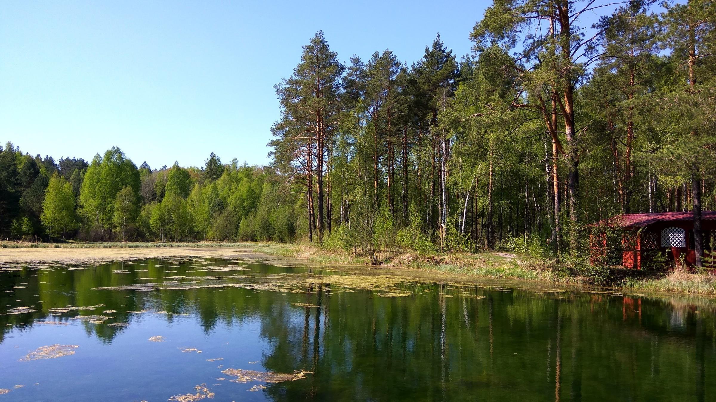 Доклад национальный парк орловское полесье 5885
