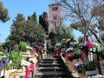 В Барселоне пройдёт Фестиваль цветов