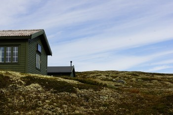 Туристов эвакуировали из нацпарка в Норвегии из-за вируса