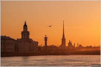 Петербург установил рекорд турпотока