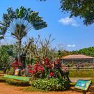 Зоопарк-сафари «Дуншань»