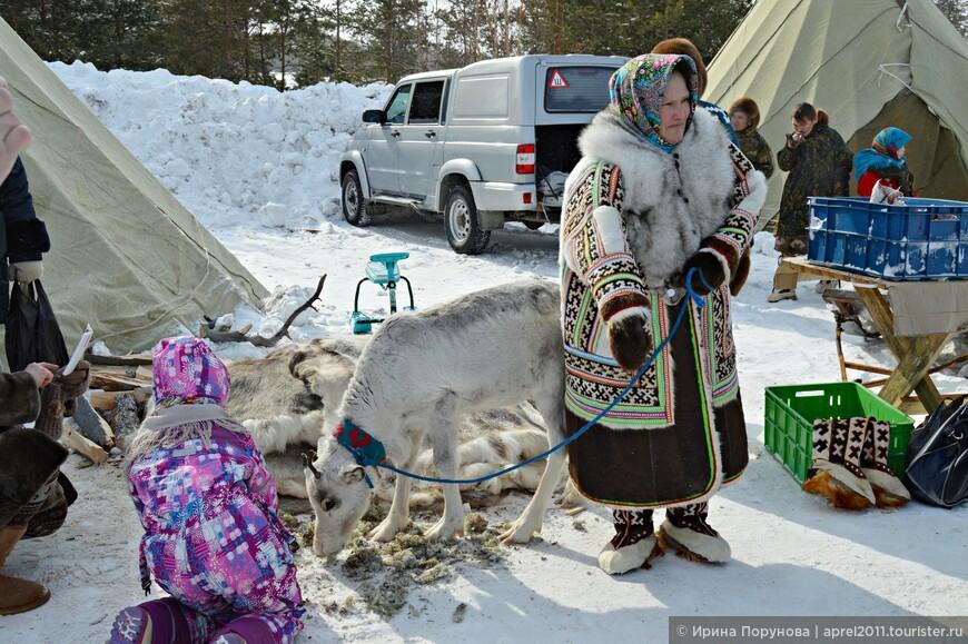 Особенно чтили ханты белых оленей. Образ белой важенки (белой оленихи) вообще окутан мифами и легендами