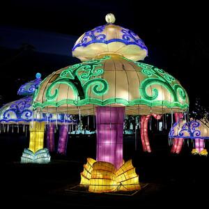 Парк— «светлячок»