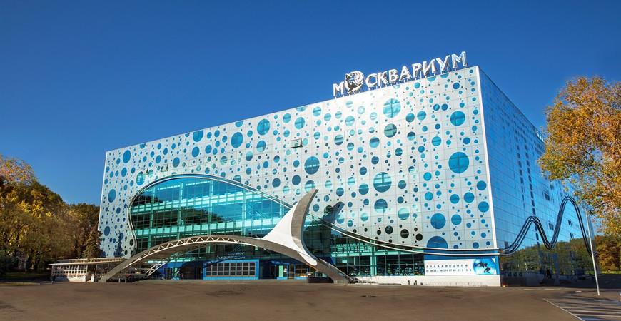 Билеты на шоу в москвариум на вднх официальный сайт продажа билетов в театр новосибирск