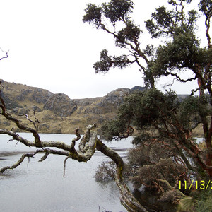 Анды около Куэнки/ Andes near Cuenca/ Ecuador