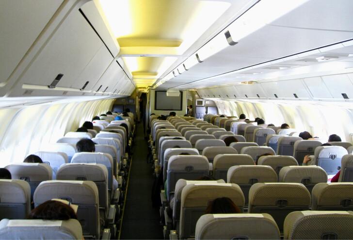 Эконом-класс Boeing 767–300 авиакомпании Japan Airlines © Altair78, CC BY-SA 4.0 на commons.wikimedia.org