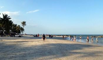 Пляж в Таиланде закрыли из-за нападения акулы