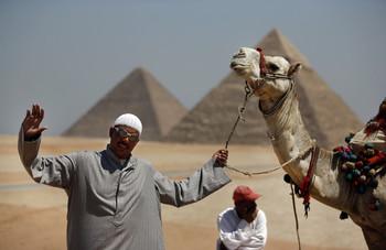 В Египте для торговцев, пристающих к туристам, ввели большие штрафы