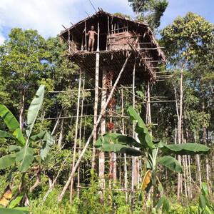 Коровайский дом сделан без единого гвоздя и его высота метров 10-15