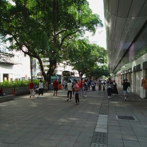 Маршруты Гонконга. Коулун