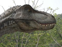 Мадрид приглашает на бесплатную выставку динозавров