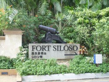 Форт Силозо