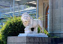 Скульптура льва на парадной лестнице