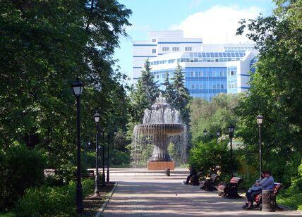Вид на фонтан с боковой аллеи