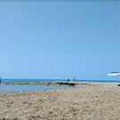 Черепаший пляж Алагади