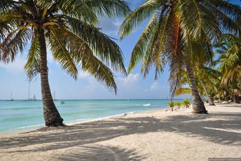 МИД РФ предупреждает о ветряной оспе в Доминикане