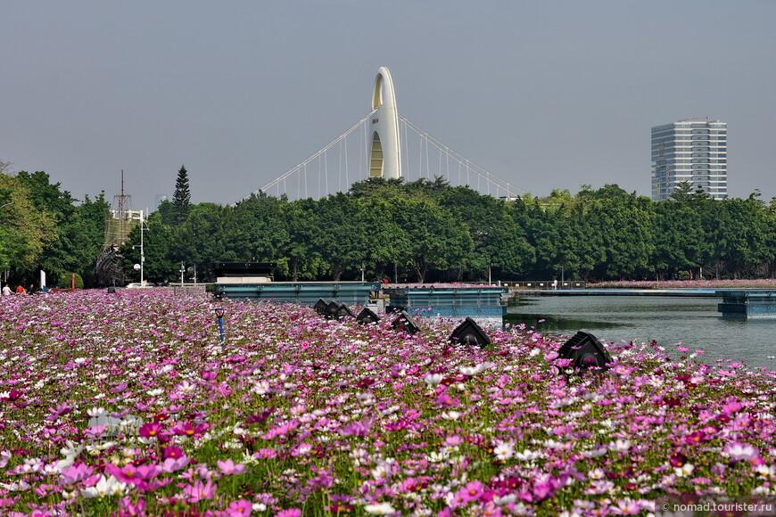 Левее башни Жемчужную пересекает мост Liede Bridge. По нему мы ездили в Пачжоу.