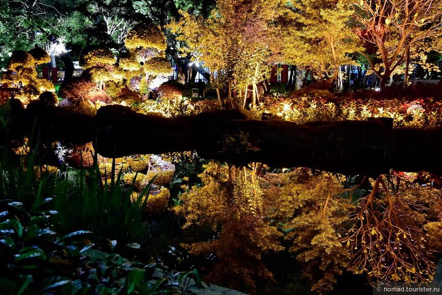 Подсвеченные деревья отражаются в пруду и создают просто сюрреалистическую картину!