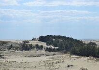 Высота_эфа.дюны.jpg