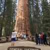 Национальный Парк Секвоя (Sequoia National Park)