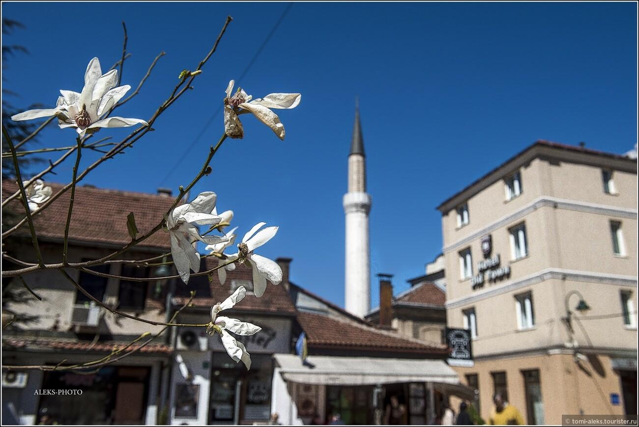 Попробую помимо видео-ряда, который рассказывает вам о городе, добавить немного интересной информации, почерпнутой из интернета. Сразу отмечу, что наше путешествие по бывшей Югославии выпало на апрель месяц, когда вся природа оживала и везде было много цветов..., Очарование Сараево (прогулка первая)