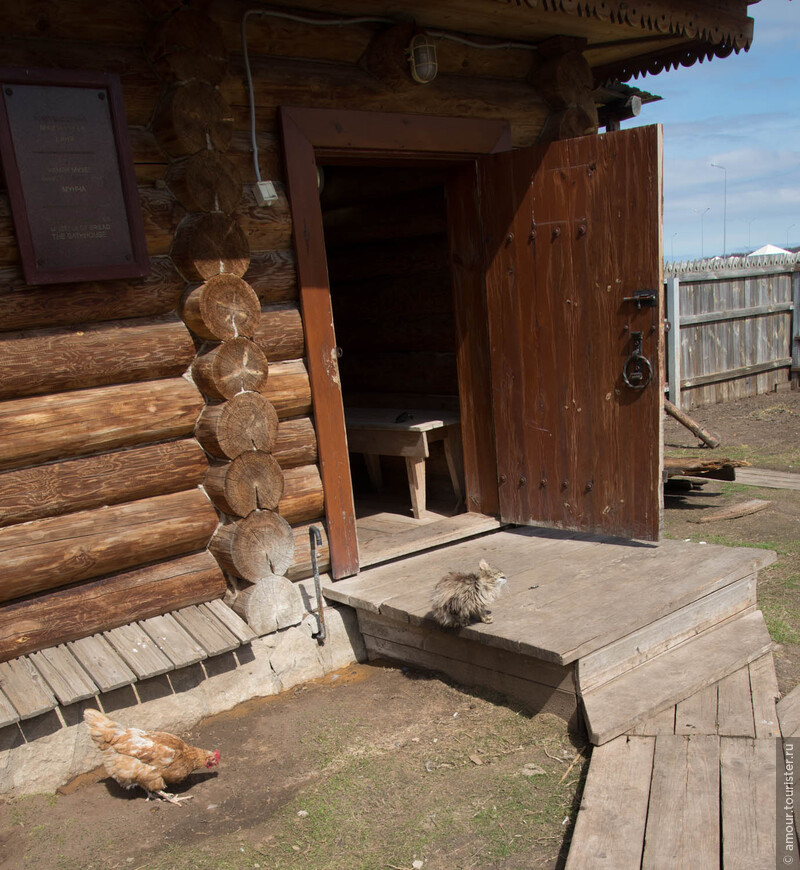 На крылечке бани греется на солнышке кошка.