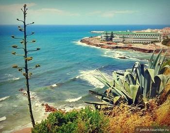 Туристы погибли в Португалии при попытке сделать селфи