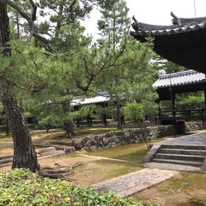 Храм Дайтокудзи в Киото (大徳寺)
