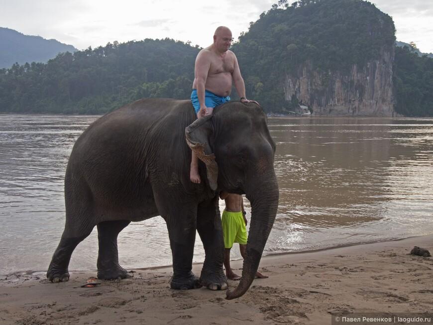 Катание и купание со слонами в Меконге