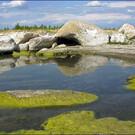 Озеро Шалкар (Северо-Казахстанская область)