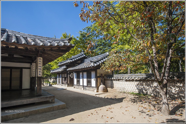 Блуждаем по коридорам между домиками - в тени деревьев хурмы... Красота..., Загадки корейской этно-деревни (часть первая)
