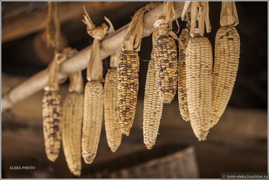 И вновь - живописная кукуруза... Ее развешивают прямо под крышами...