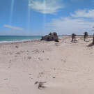 Пляж Эль-Ашен