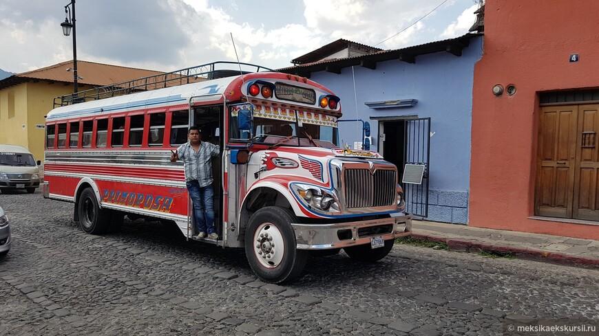 Чикен Бас/ Chicken Bus