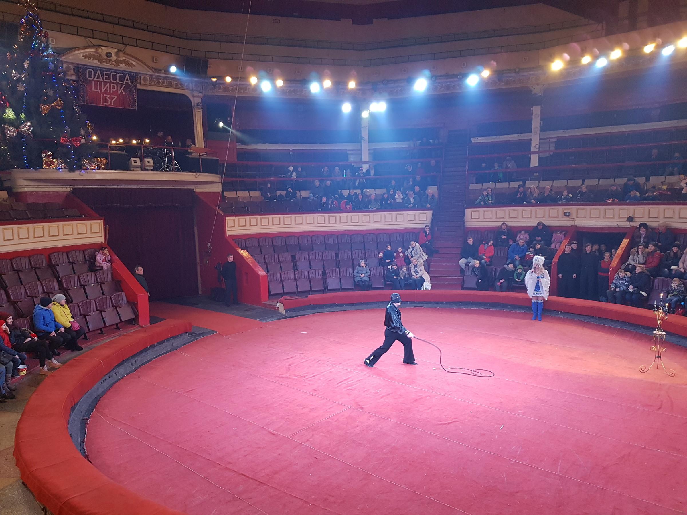 Одесский цирк схема зрительного зала фото 582
