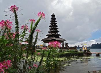 Турбизнес Индонезии призывает власти субсидировать авиаперелёты в страну